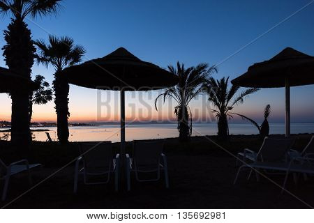 Photo of beach and sea in protaras cyprus island with beach chairs and palm trees silhouettes at sunset.