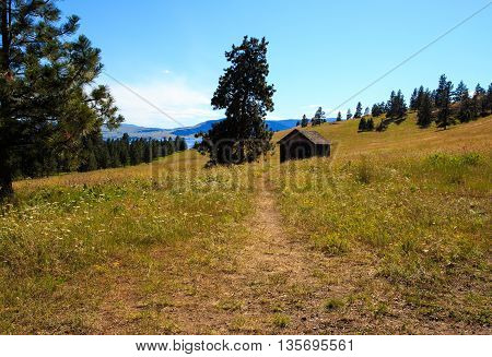 Landscape of mountain trail with rustic cabin.