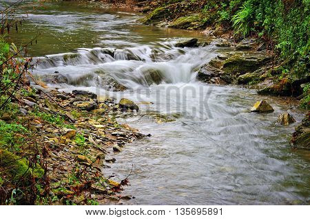 mountain river with moss stones and greenery