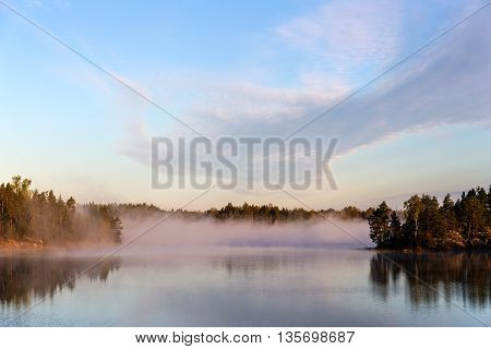 tranquil morning landscape with fog on the lake
