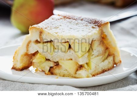 Piece of apple pie in a plate on the table. Close-up. Homemade baking. Selective focus
