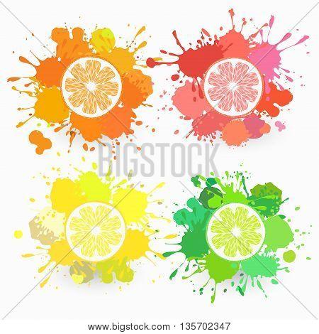 set of four citrus fruits, orange, lemon, lime, grapefruit with color splatters