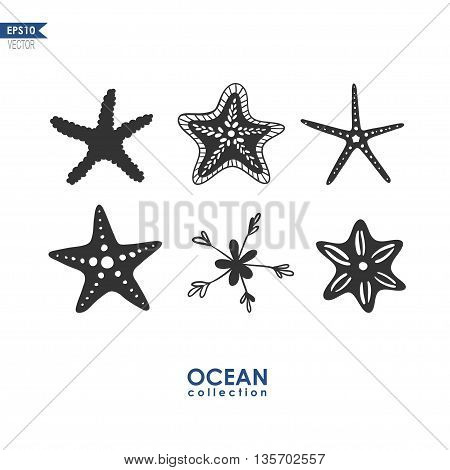 starfish isolated on white, set of different species of starfish, vector illustration
