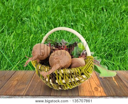 beet in a basket on a green background