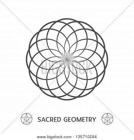 flower of life vector image sacred geometry symbol