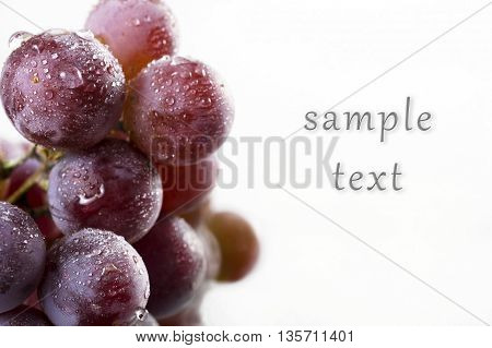 grapes with drops of water with the ability to enter text