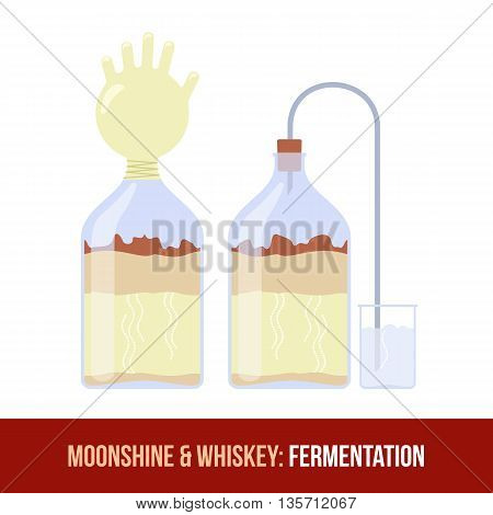 Moonshine And Whiskey. Fermentation