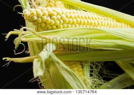 Fresh Corn On The Cob Over A Black Background