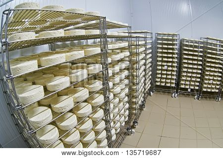 Cheese Factory Warehouse With Shelves Of Product