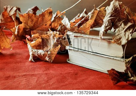 Autumn still life -old books among the autumn leaves and bright sunlight.Autumn objects. Focus at the book's spine.Autumn retro still life with autumn leaves.