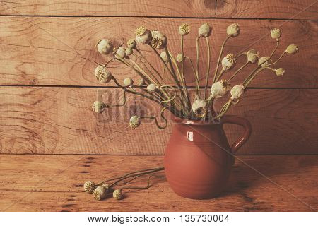 Vintage Still Life With Dry Poppy Pods