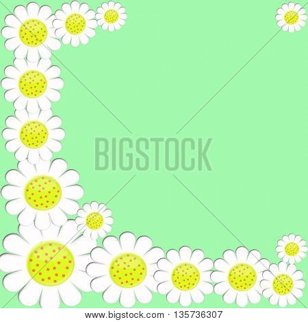 White background on green background