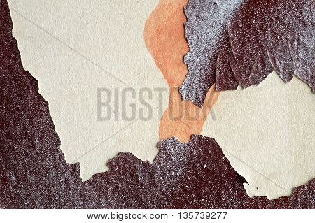 Abstract Textured Background - Close Up Of Grungy Old Wall