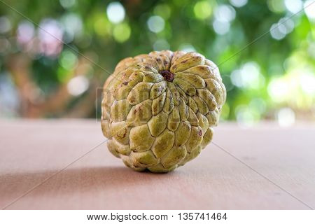 Fresh Sugar apple fruit with blurred background or bokeh of the leaves are exposed to light