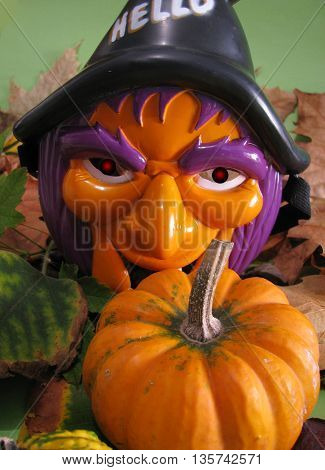 Halloween witch with carved pumpkin over color background