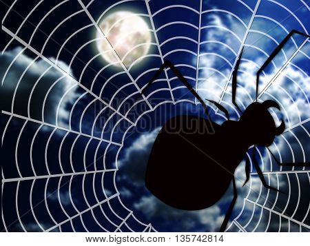 spider web and big spider in the dark night with moon