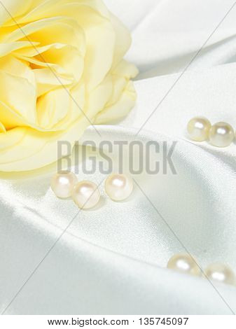 Beautiful  rose with pearls