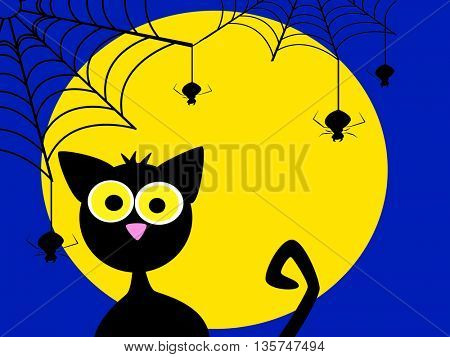 black cat and spider web