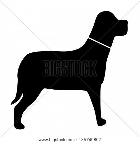 icons with animal dog  silhouettes