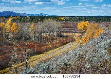 Autumn landscape with a road in Yellowstone, Wyoming, USA