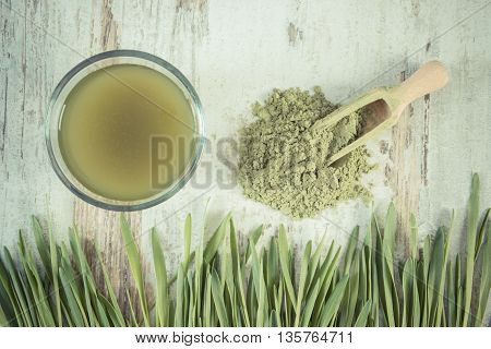 Vintage Photo, Barley Grass With Beverage And Young Powder Barley, Body Detox