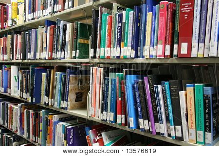 A photo of a bookshelf at the library