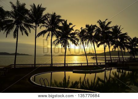 Paradise beach sunset or sunrise with tropical palm trees, Thailand