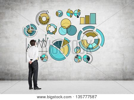 Businessman Analyzing Pie Charts