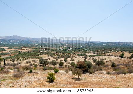 Cretan landscape with olive trees. Crete Greece.