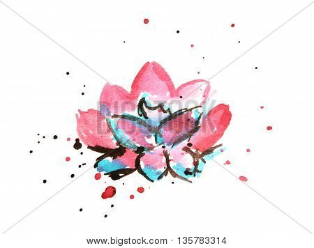 Beautiful hand drawn water lily on white background