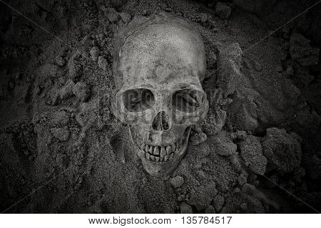 Still life with human skull on sand background