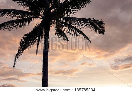 Sunset over the tropical beach. Vertical crop.