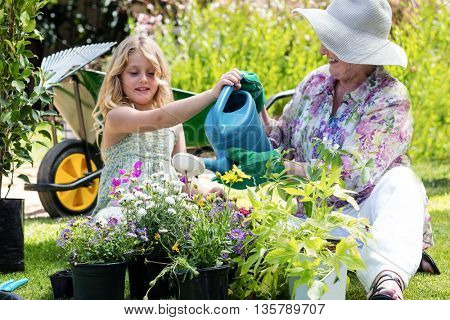 Grandmother and granddaughter watering the plants in the garden on a sunny day