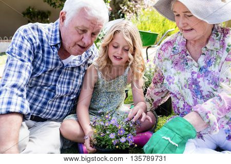 Grandparents and granddaughter sitting in the garden with a flower pot