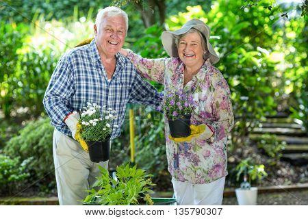 Portrait of happy senior couple holding flower pots in garden