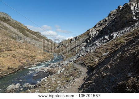 A hiking trail winds along the Savage River in Denali National Park