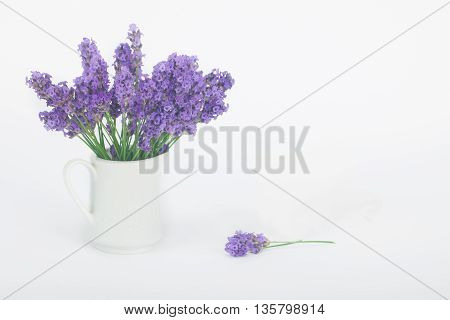 Bouquet of lavender flowers in a white porcelain jug vase