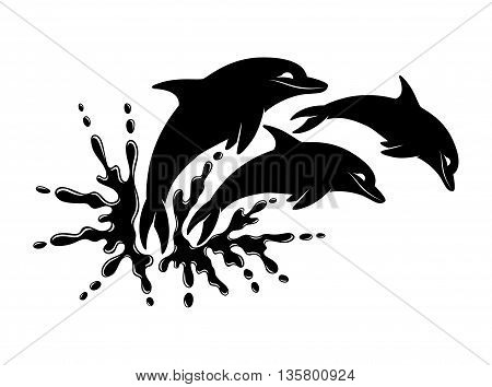 Water splash and three dolphin on a white background.