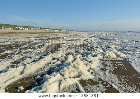 Bach with sea foam on the shore of the North Sea.