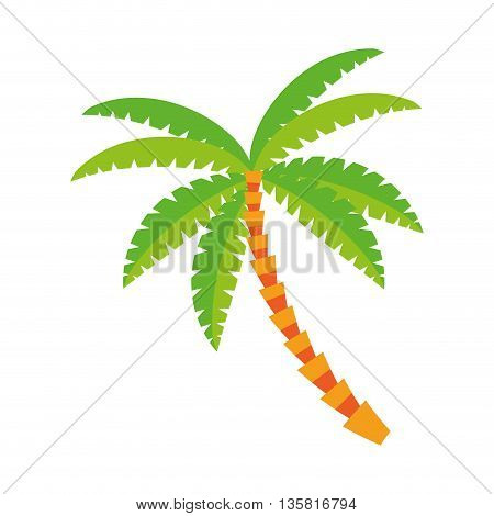 flat design palm tree icon vector illustration