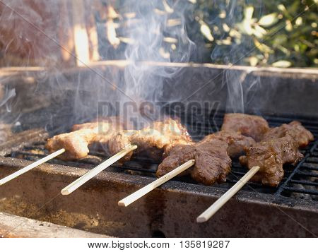 Closeup of BBQ grill tasty beef Kebab on the fire with smoke background