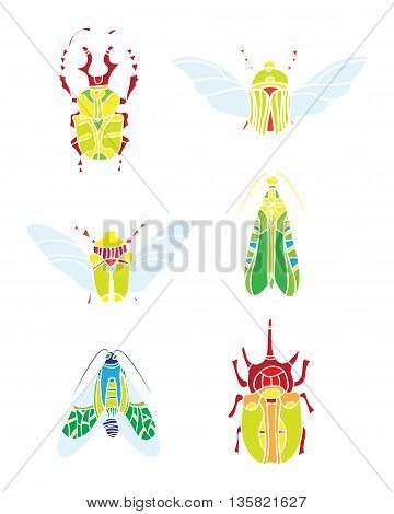 color vector beetles. natural elments for design.