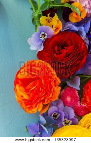 Fresh cut Flowers Background on Blue - ranunculus, pansies and hortensia