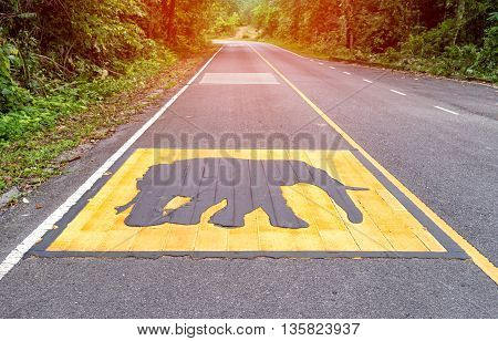 Beware of the elephant warning sign on asphalt road to tell that there may be the elephants on the road
