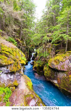 Landscape waterfall image of Avalanche Creek in Glacier National Park Montana.
