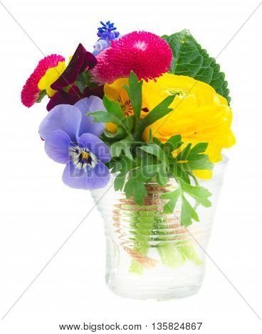 Posy of pansies, daisies and ranunculus in glass isolated on white background
