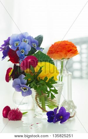 Colorful vibrant cut flowers in vases on white table