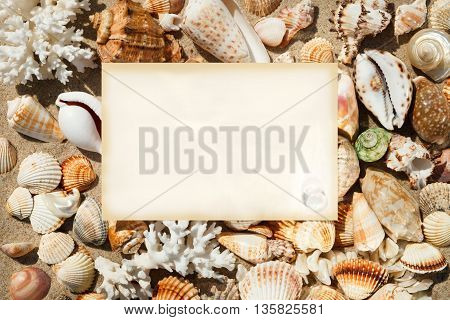 a sheet of paper on the background of exotic shells