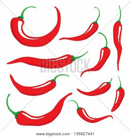 Vector set of hot chilli pepper in different sizes. Isolated on white.