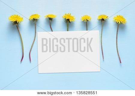 Dandelion flowers and blank card on turquoise background